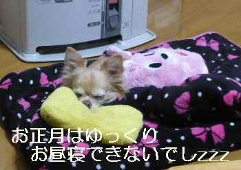 blog2013010305.jpg
