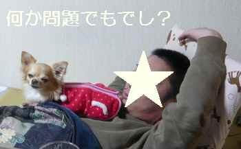 blog2013010402.jpg