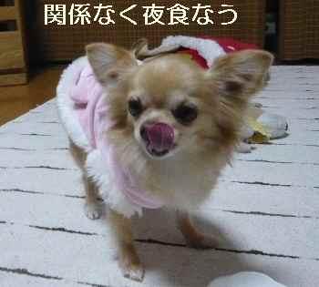 blog2013010507.jpg