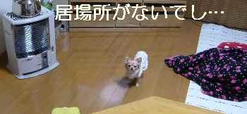blog2013010807.jpg