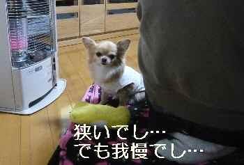 blog2013011104.jpg