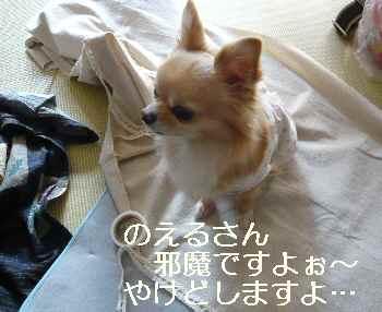 blog2013011501.jpg