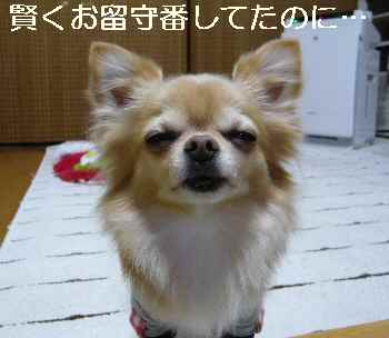 blog2013011705.jpg