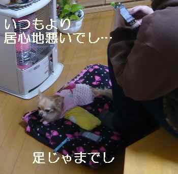 blog212121404.jpg