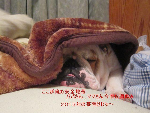 011_20130103131957.jpg