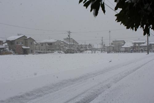 クリスマス寒波1 (1)