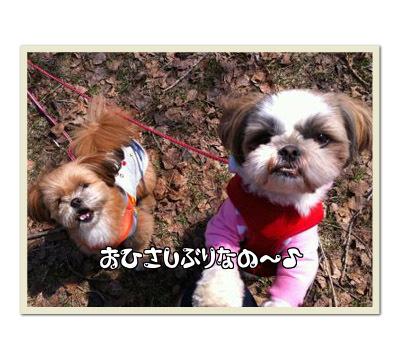 プルー&ベッキー