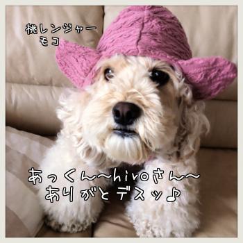 桃レンジャー