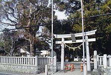 市野・熊野神社