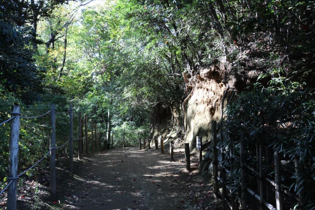 『沖永良部の高倉』へ向かう道