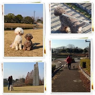 2013-12-30-1.jpg