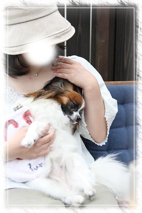 20120630_IMG_3233.jpg