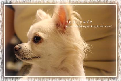 20120901_IMG_3561.jpg