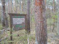 グレースの森