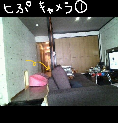 top0409-7.jpg