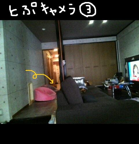 top0409-9.jpg