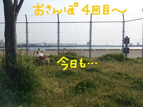 top0414-8.jpg