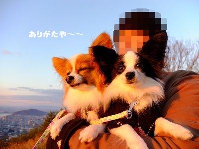 1_20130104202735.jpg