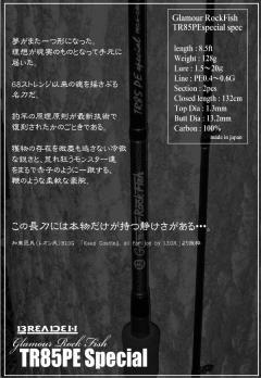 TR85PEスペシャル