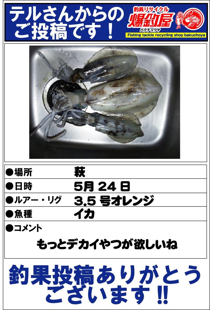 テルさん2012.5.26
