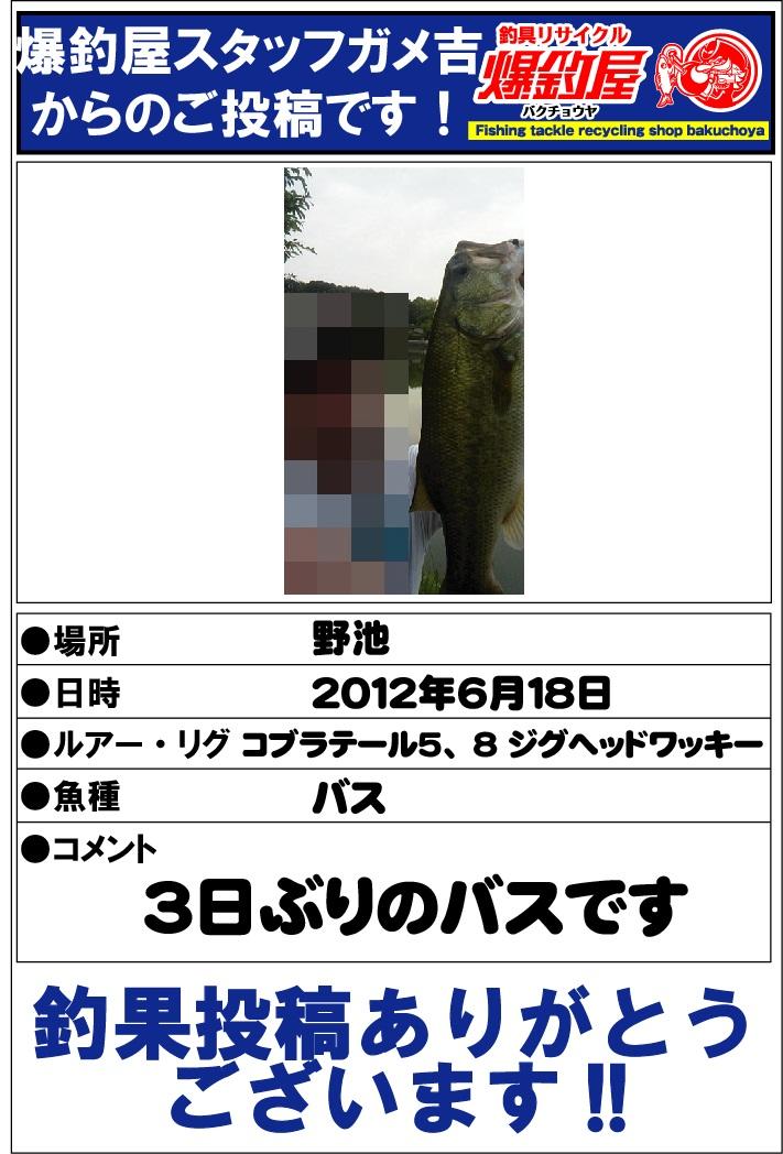 ガメ吉20120621