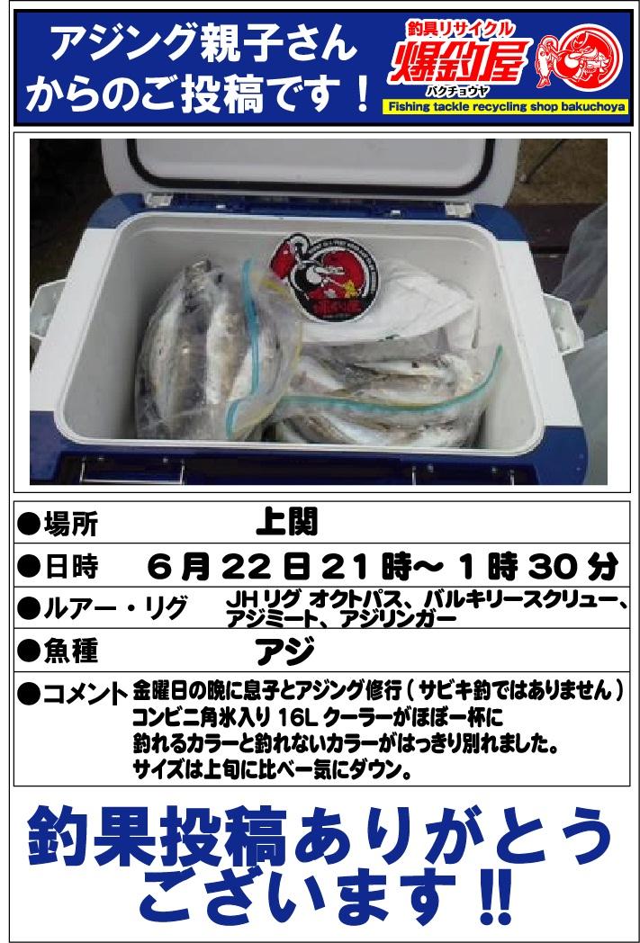 アジング親子さん20120623
