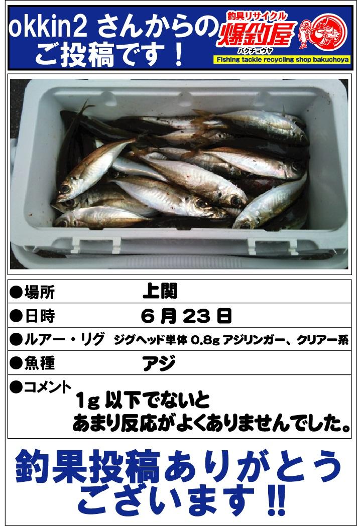 okkin2さん20120625
