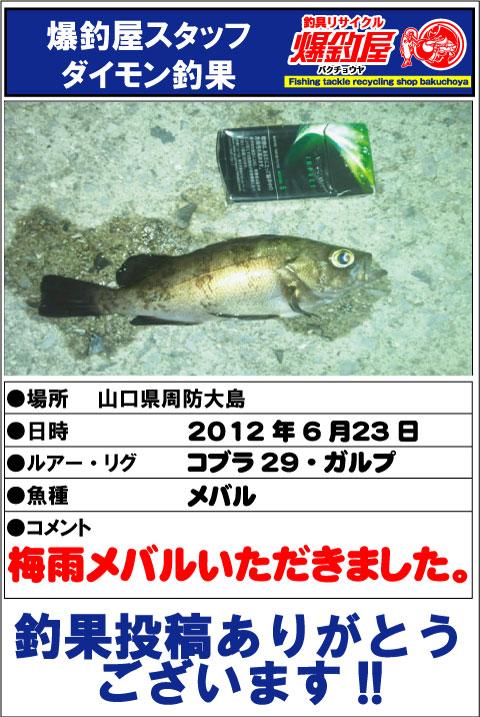ダイモン20120623