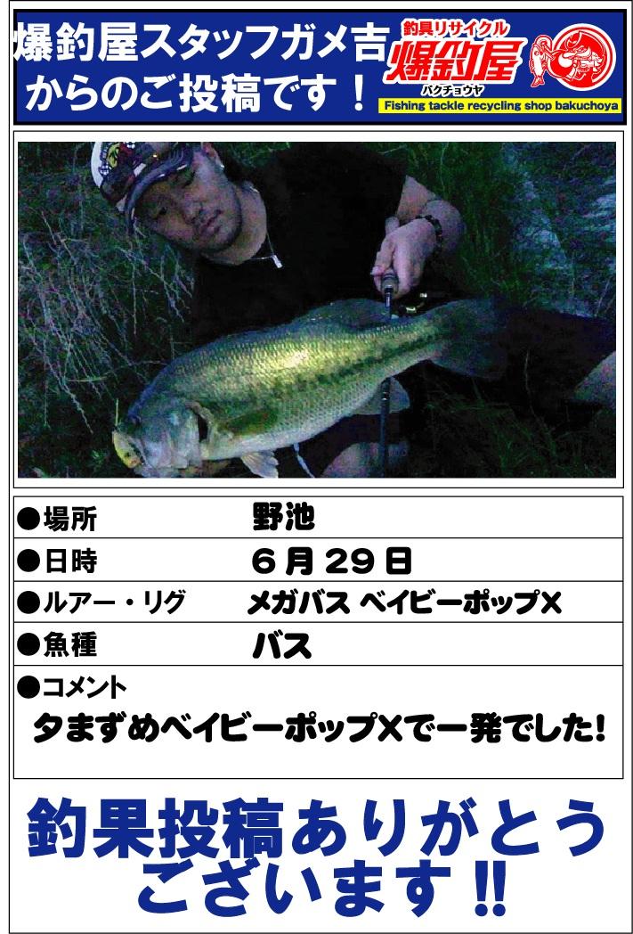 ガメ吉20120630