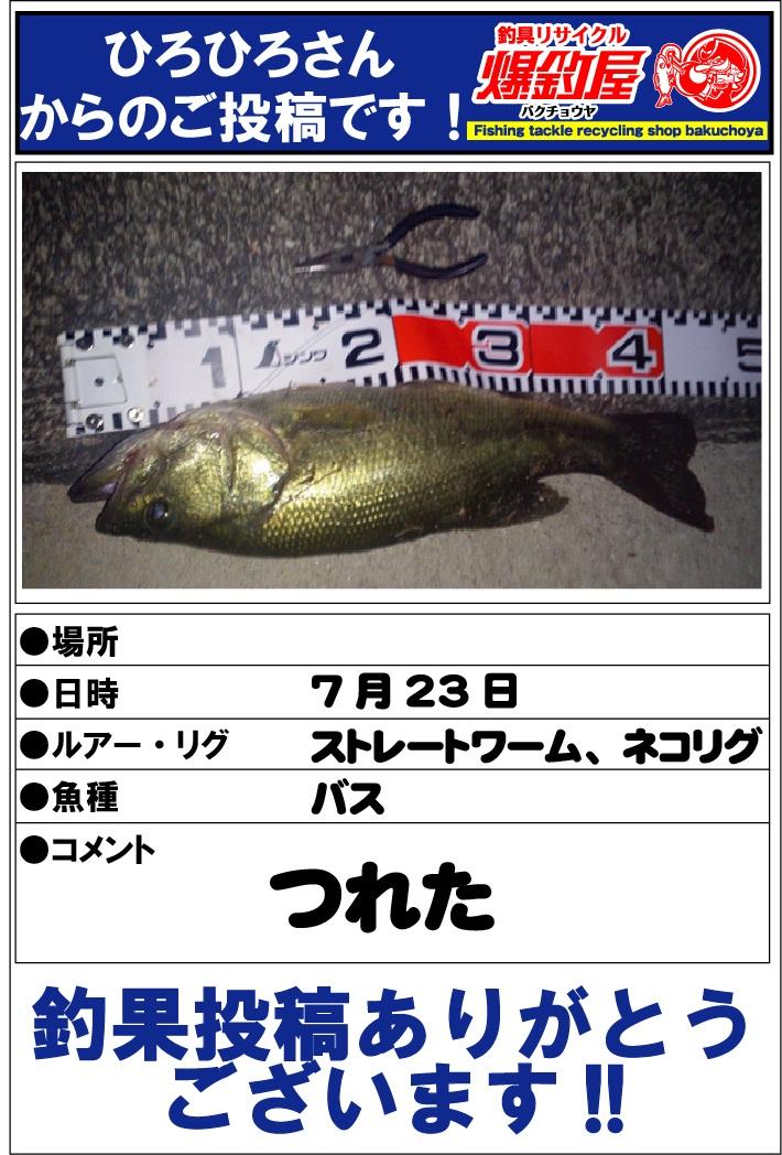 ひろひろさん20120725