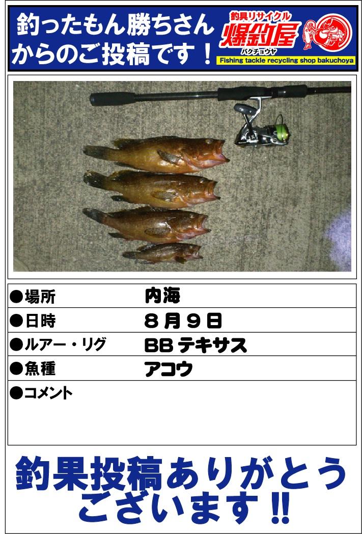 釣ったもん勝ちさん20120825