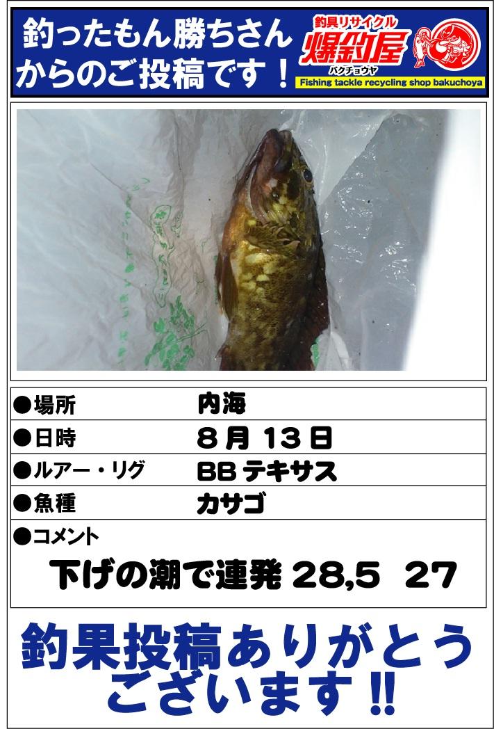 釣ったもん勝ちさん20120830