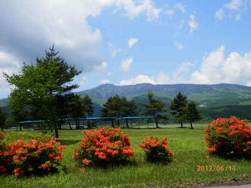 6月のバラギ高原
