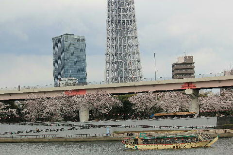 sumidagawa-ff - コピー