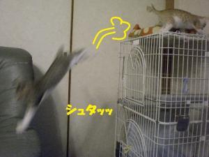 ぴょんキー2