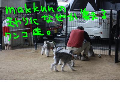 snap_baron20101214_201341143439.jpg