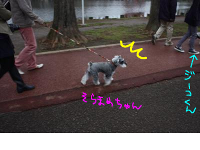 snap_baron20101214_2013421816.jpg