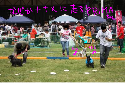 snap_baron20101214_201352141044.jpg