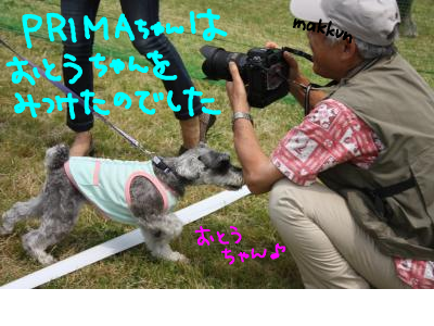snap_baron20101214_201352141525.jpg