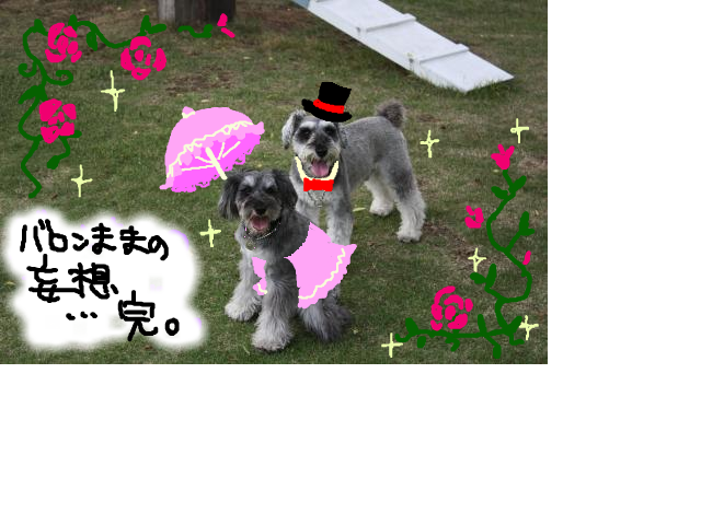 snap_baron20101214_20135322323.jpg