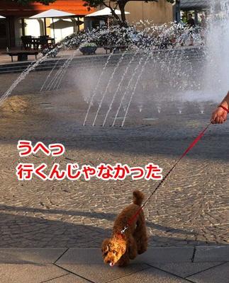 b177_20120731192047.jpg
