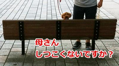 b181_20120731191637.jpg
