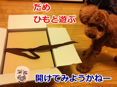 b42_20120707164248.jpg