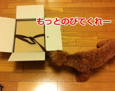 b44_20120707164246.jpg