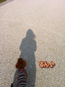 b781_20121108230140.jpg