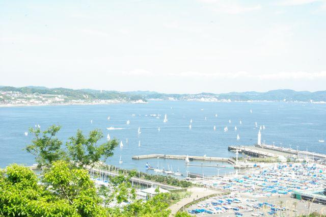 江の島 074