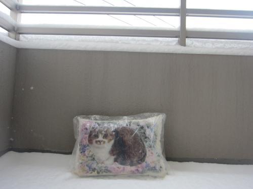 雪とおまつさん