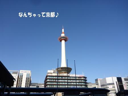 20131226_5.jpg
