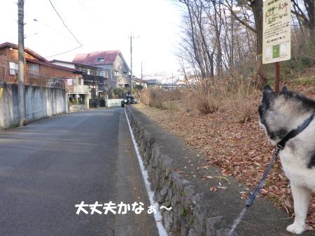 20140126_11.jpg