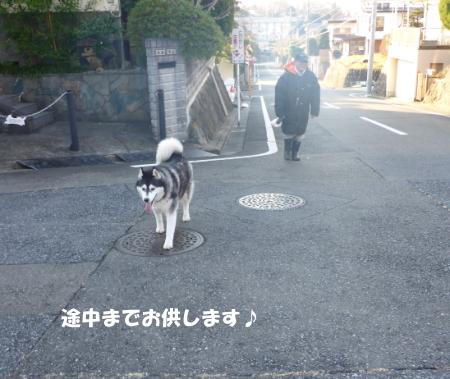 20140126_2.jpg